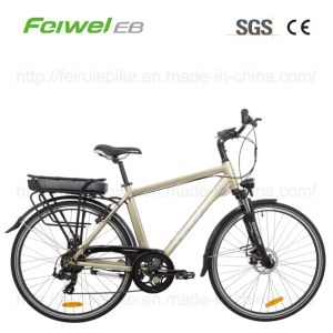 "28"" Electric Bicycle with Rear Rack Battery (TDB03Z) pictures & photos"