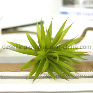 Decorative Plant Natural Touch Artificial Succulents Artificial Flower (SW17665) pictures & photos