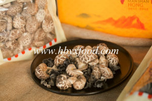 Heavy Weight 2-3cm Dried Tea Flower Mushroom Dried Food pictures & photos