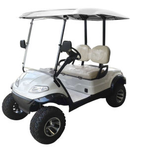 2 Seaters Lifted Golf Cart for Golf Course pictures & photos