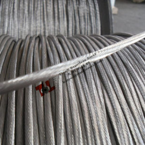 1.4301 304 1X19 Stainless Wire Rope 8mm pictures & photos