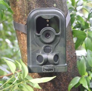 Deer IR Motion Triggered Hunting Camera