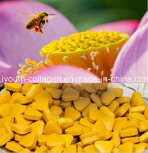 Pollentop 100% Natural Lotus Bee Pollen Chewable,No Antibiotics,No Pathogenic Bacteria, No Pesticide Residues,Whitening,Nourishing Internal Organs Prolong Life pictures & photos