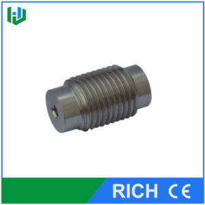 Water Switch Small Screw for Waterjet Part pictures & photos