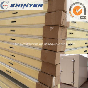 Color Steel or Stainless Steel Surfaced Cold Room Panel pictures & photos