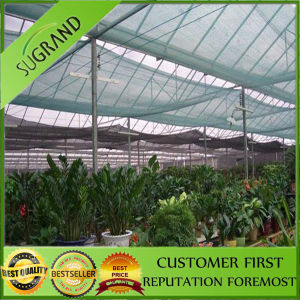 Agricultural 40% Shade Net in Green Color pictures & photos