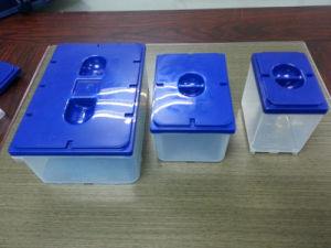 OEM Custom Design Plastic Box Mold pictures & photos