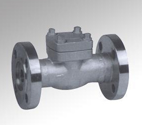 Forged Steel Flange Check Valve (DTV-H004)
