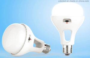 LED Energy Storage Bulb