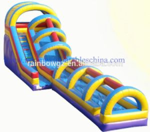 Inflatable Water Slides China / Water Slides for Kids / Water Slides to Buy pictures & photos