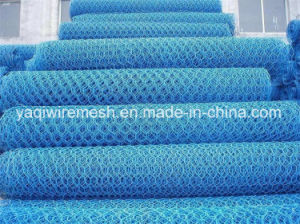 Gabion Mesh with High Quality Made in China pictures & photos