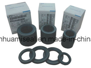 Framework Oil Seal pictures & photos
