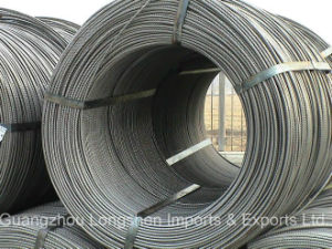 Hight Quality Reinforced & Deformed Steel Bar/Raber