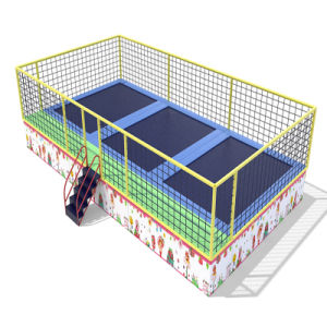 Hot Sell Big Size Commercial Trampoline pictures & photos