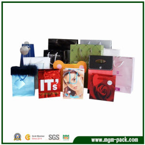 Rectangle Popular Custom Paper Gift Handbags for Promotion pictures & photos