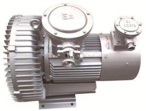 0.7kw Side Channel Blower with Atex Explosion Proof Motor (410H06) pictures & photos