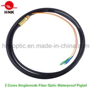 Outdoor Singlemode Multimode Fiber Optic Waterproof Pigtail pictures & photos