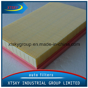 Auto Air Filter of Good Quality C2998-5X pictures & photos