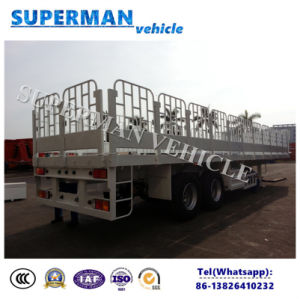 Utility Two Axle Store House Side Wall Cargo Van Semi Truck Trailer pictures & photos