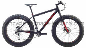Fat Tire Mountain Bicycle Bike/Chopper Beach Cruiser Bicycle Bike/4.0 Fat Tire Beach Cruiser Bicycle Bike/Fat Tire MTB Bike/ Fat Tire Bike pictures & photos