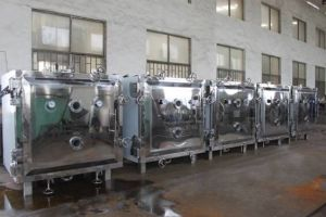 Fzg-10 High Effiency Vacuum Tray Dryer Machine pictures & photos