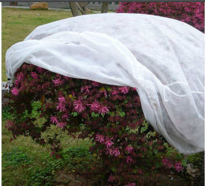 Polypropylene Agricultural Plant Cover Non Woven Fabric pictures & photos