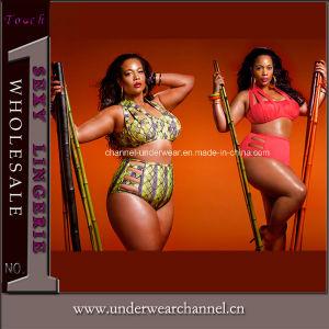Women Bikini Set Luxury Swimsuit Triangle Plus Size Swimwear (TYQ069) pictures & photos