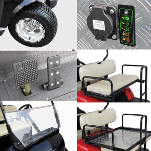 Solar Panel Express 6+2 (8 seater electric golf cart) pictures & photos