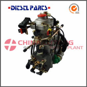 Fuel Injection Pump Nj-Ve4/11e1800L025 for Jx493zq5c pictures & photos