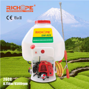 Richope Knapsack Power Sprayer with SGS for Agricultural Use (SM-909) pictures & photos