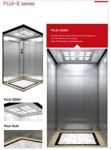 Hairline Stainless Steel Cabin Home Elevator pictures & photos