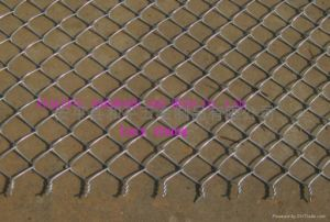 Twisted Edge Chain Link Fence pictures & photos