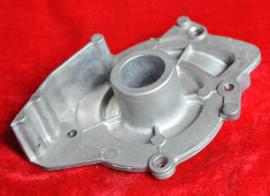 Aluminum Die Casting Parts of Water Pump for Garden Use pictures & photos