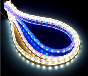 Ce EMC LVD RoHS Certifaction High Voltage SMD LED Rope Lighting pictures & photos