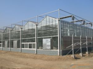 Polycarbonate Sheet Greenhouses for Flower