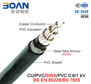 Cu/PVC/Swa/PVC, Control Cable, 0.6/1 Kv (BS EN 60228/BS 7655) pictures & photos