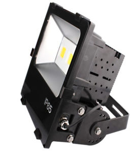 SAA CE 50W COB High Power Outdoor LED Flood Light pictures & photos