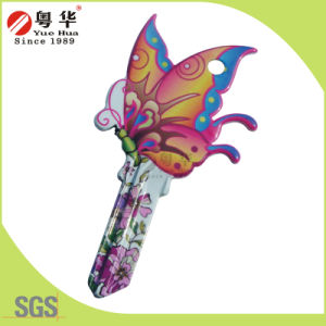 Factory Price Wholesale Sales Custom Colorful Groovy Key Blank for Gifts pictures & photos
