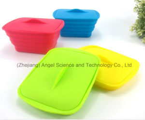 Promotional Silicone Food Storage Folding Silicone Food Box Sfb12 pictures & photos
