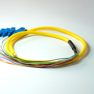 High Quality Sm SC/PC 12f Fiber Optic Pigtail pictures & photos