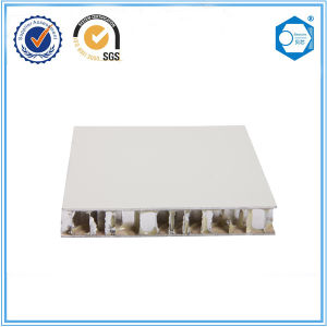 Suzhou Beecore Aluminum Honeycomb Panel for Decorative Wall pictures & photos