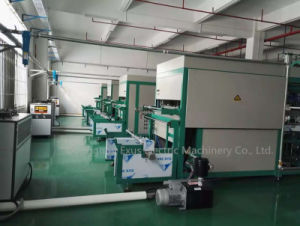 Ce Standard Good Quality Vacuum Forming Plastic Cup Lids Making Machine pictures & photos