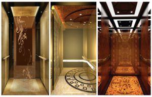 China Elevator Lift Passenger Cabin Home Elevator Cabin Design