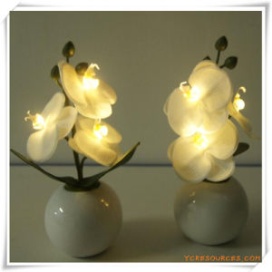 3PCS Orchid LED Artificial Flowers with Ceramics Pot for Promotion pictures & photos