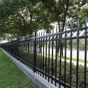 3.8 mm Welded Mesh Fence From China pictures & photos