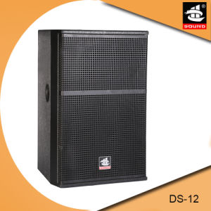 Ds-12 Meeting Room Audio System Background Speaker pictures & photos