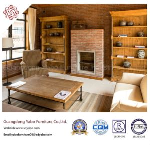 Fashionable Hotel Furniture for Lobby Lounge with Furniture Set (YB-318) pictures & photos