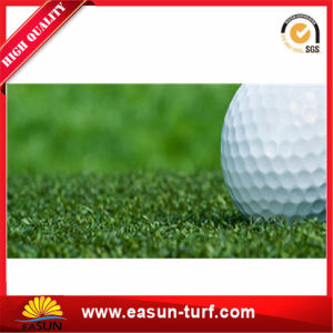 Eco-Friendly Soft Sports Artificial Grass for Football Field pictures & photos