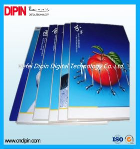 Customized Silk Screen Printing PVC Foam Board pictures & photos