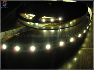 IP20 Non-Waterproof SMD 5050 LED Strip Lights